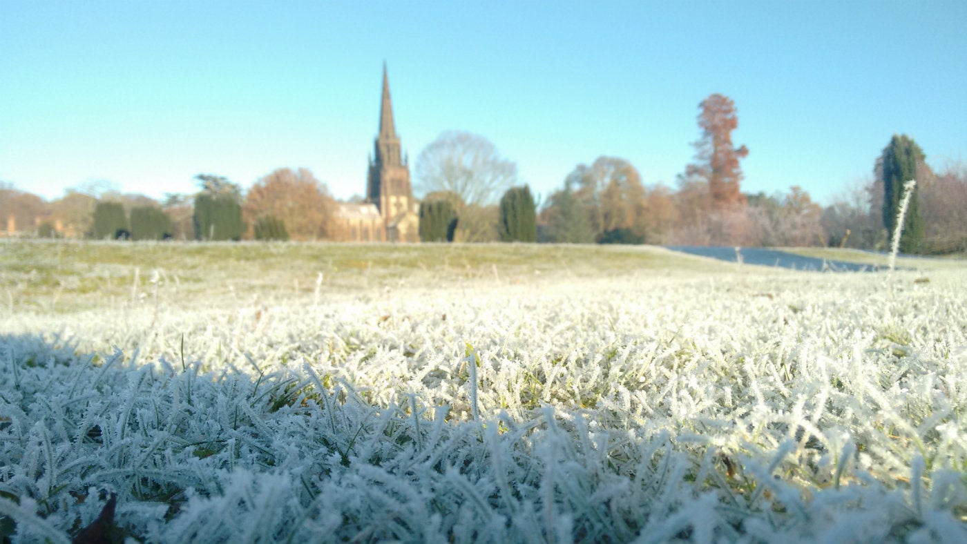 Frosty Pleasure Grounds At Clumber Park