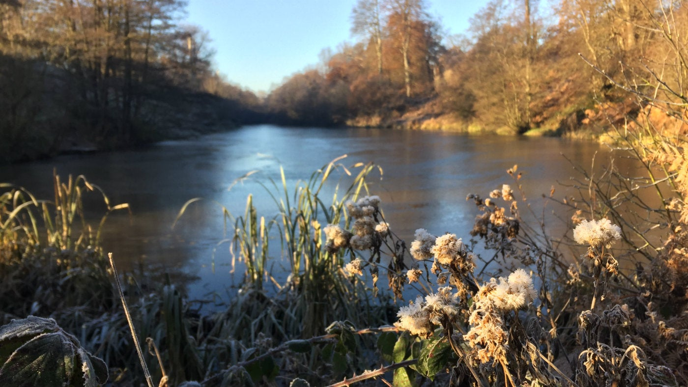 A frosty winter's day at Calke Abbey in Derbyshire