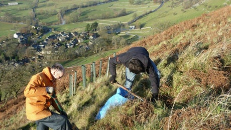 Planting trees high above Upper Wharfedale