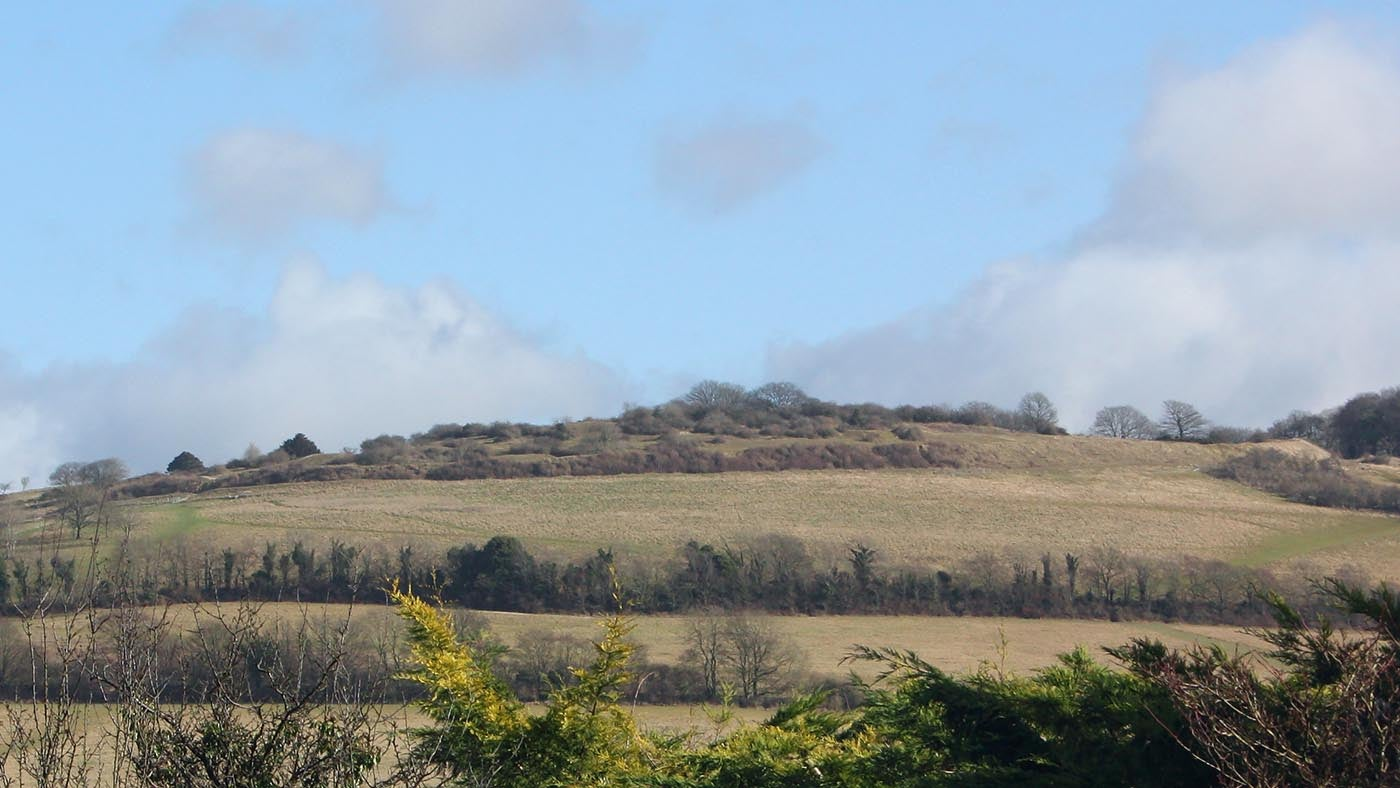 View of Cissbury Ring from the other side of Findon Valley