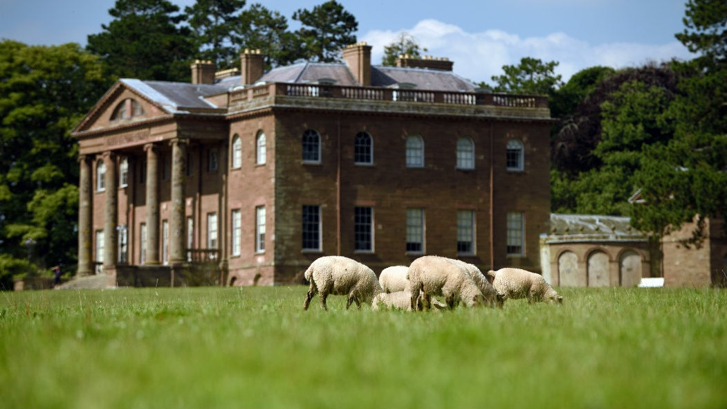 Berrington Hall from a distance with sheep grazing in the landscape
