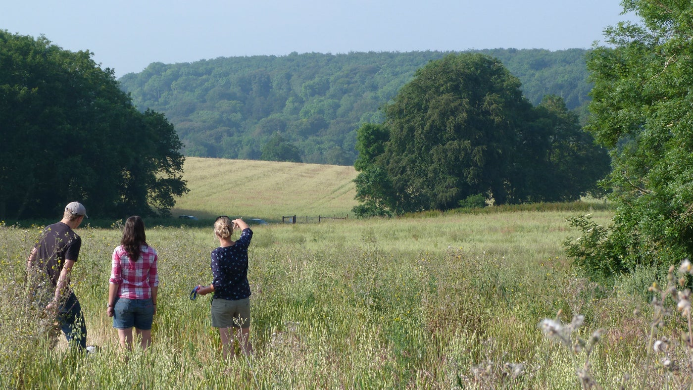 Visitors taking in views over the Rise of Northwood landscape