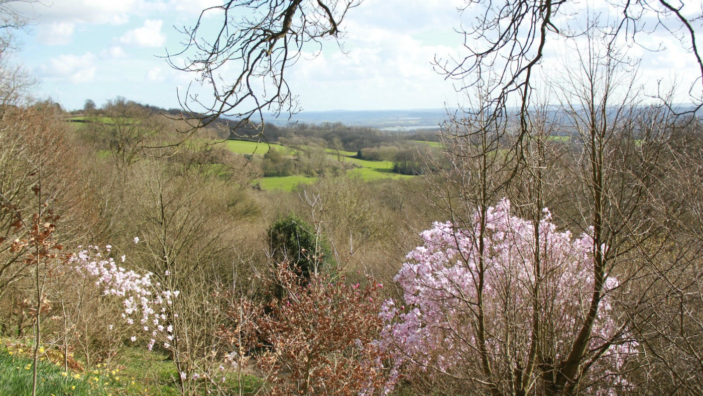 Enjoy spring views over Kent from Emmetts Garden, a National Trust property in Kent