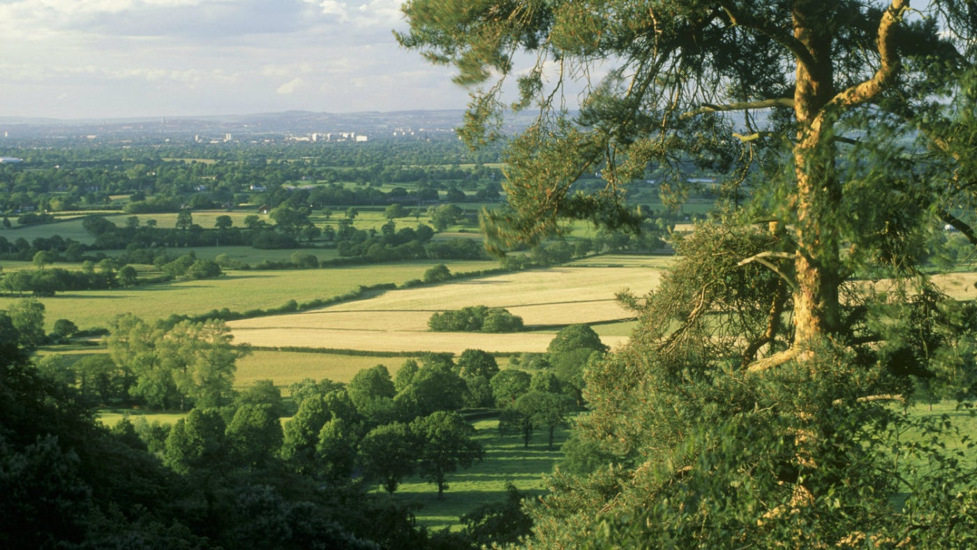 View from the edge of the escarpment at Alderley Edge towards the Cheshire Plain