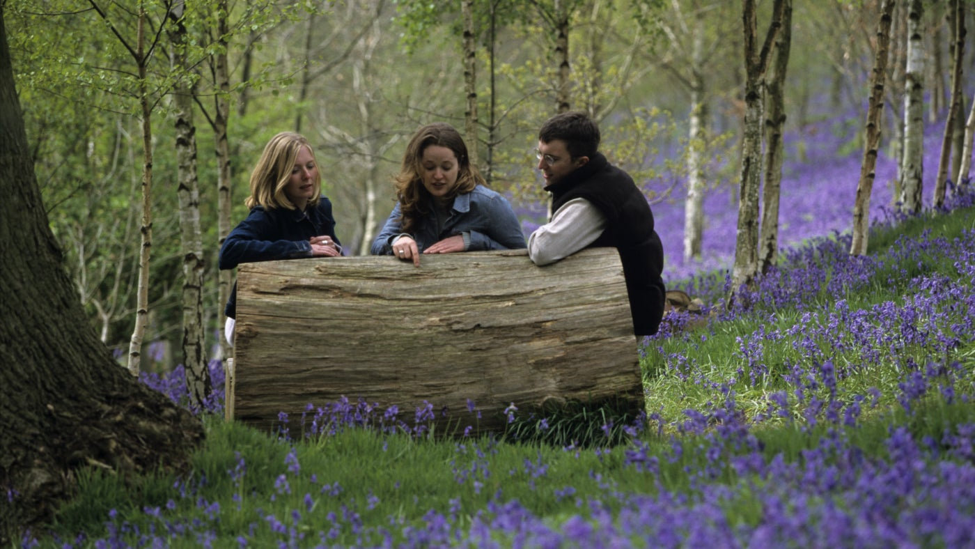Three friends talking surrounded by bluebells at Croft Castle in Herefordshire