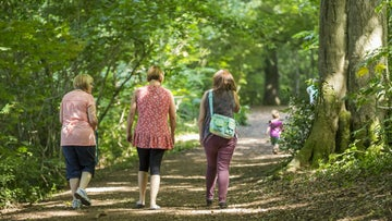 Enjoy a walk at Chartwell, a National Trust property in Kent