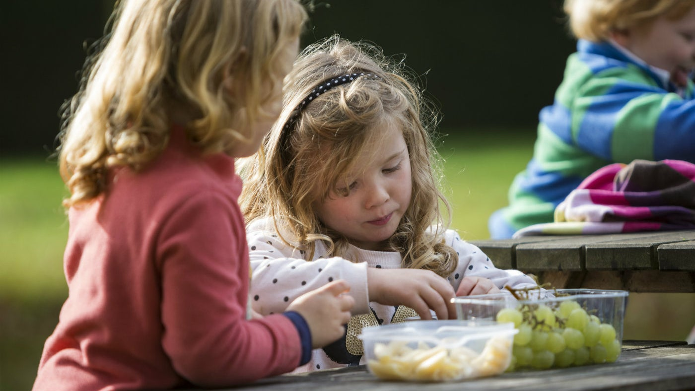 Children enjoying a picnic at Lanhydrock