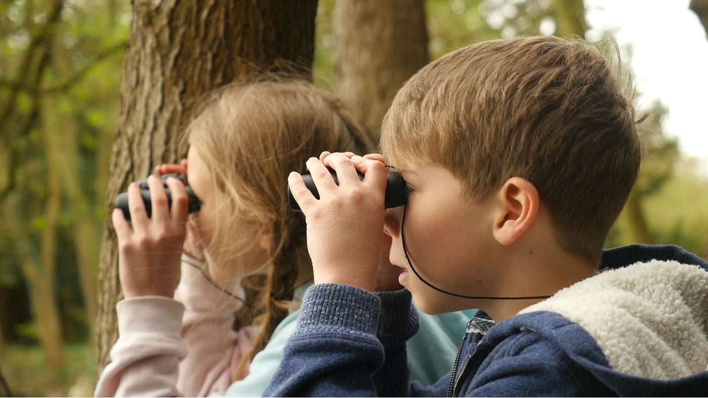 Children bird watching