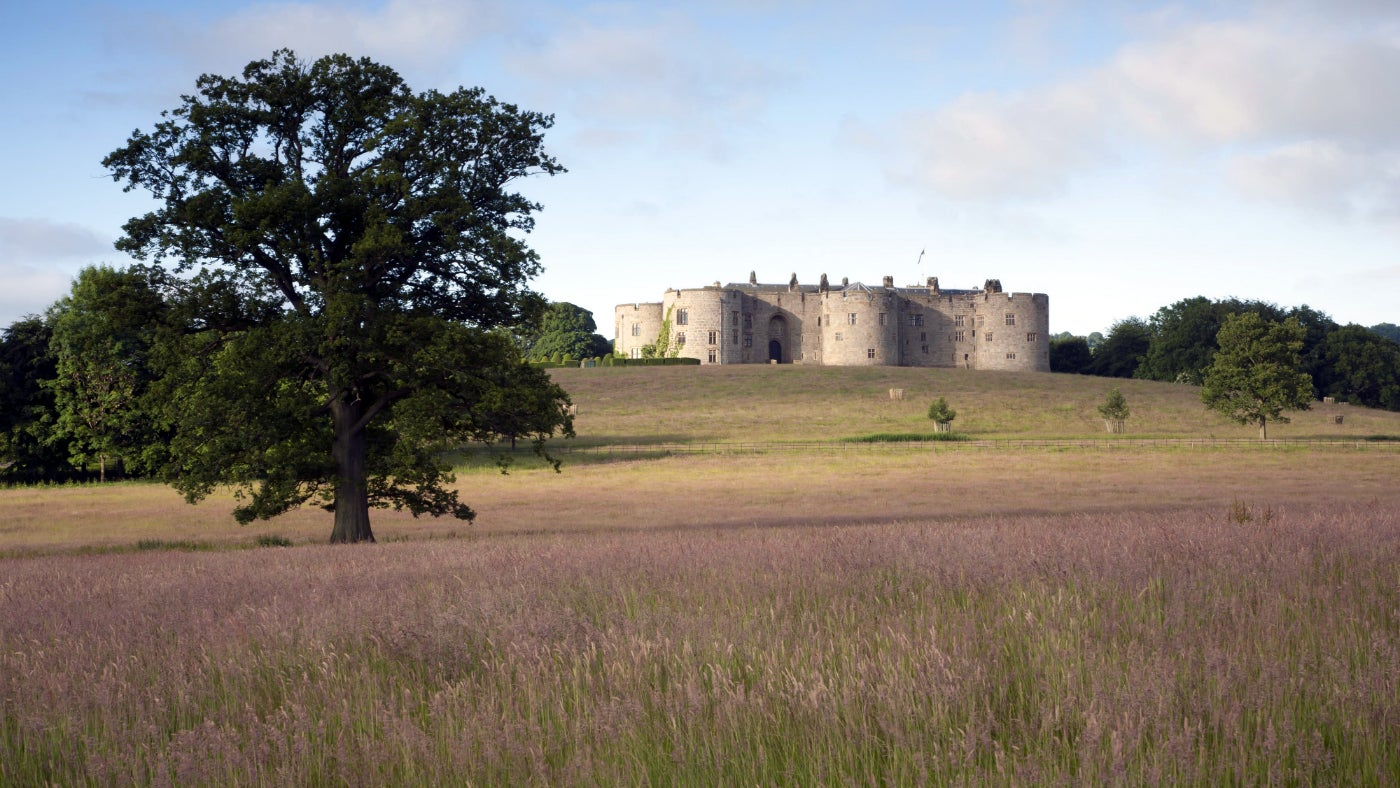 A view from the north facing Chirk Castle over the wildflower meadow