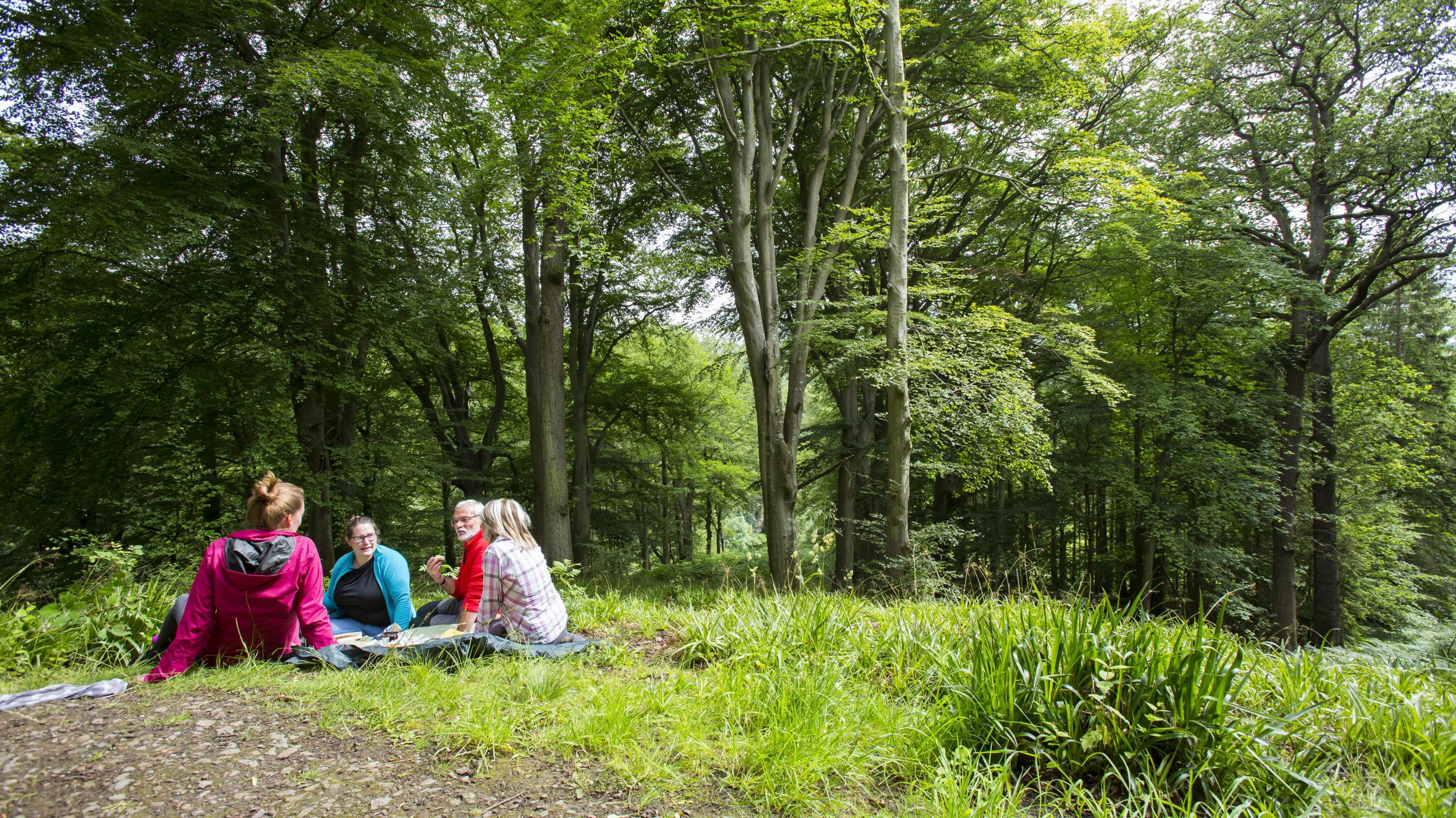 A group sit by the Summerhouse at Allen Banks