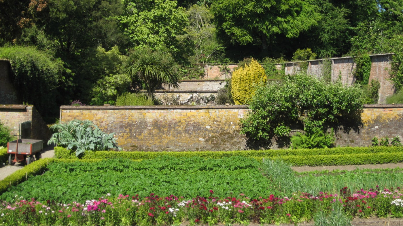 Overview of the sections of the walled kitchen garden at Trengwainton