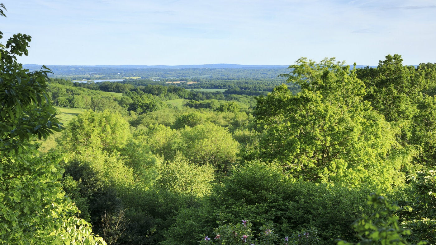 Summer view over weald of Kent from Emmetts Garden, a National Trust property in Kent
