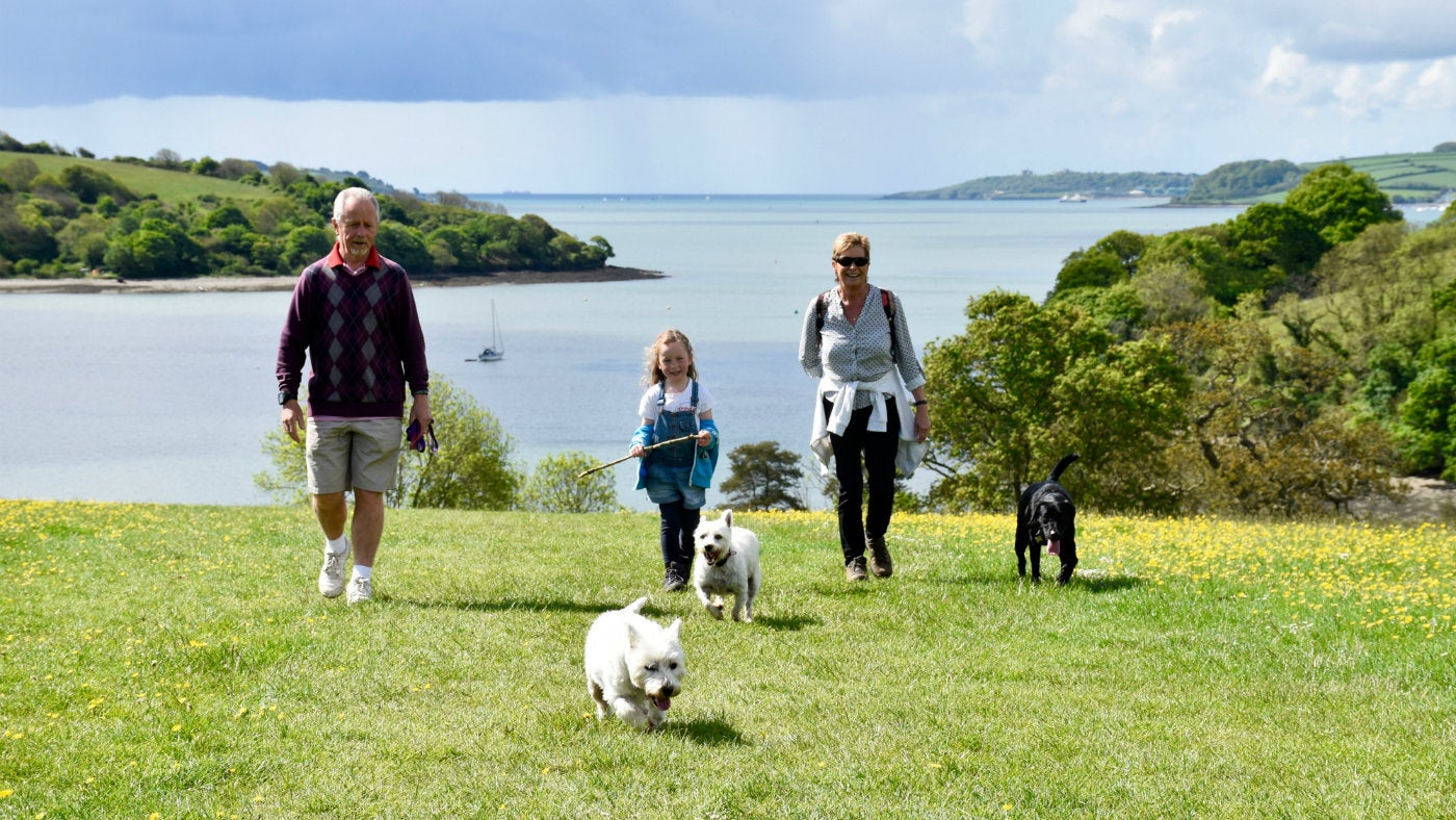 Family walks though Trelissick parkland with dogs