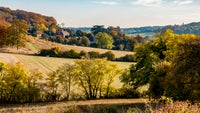 Autumn colours at Bradenham