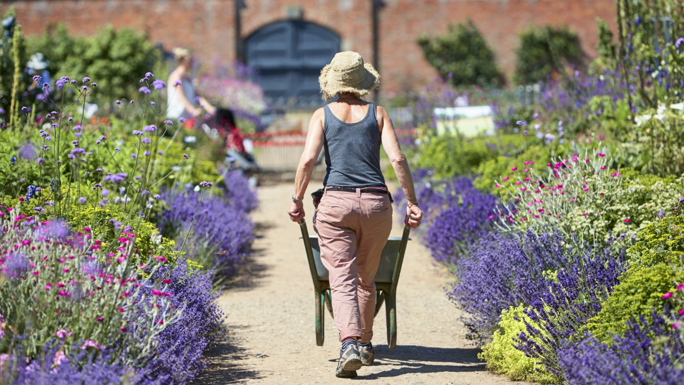 A gardner pushing a wheelbarrow in the Walled Garden at Attingham Park