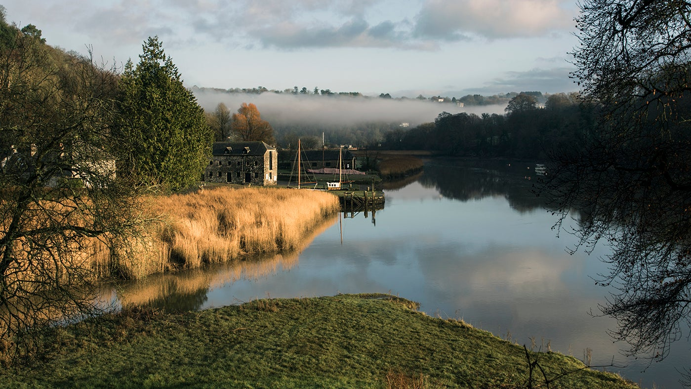 View of the river Tamar in autumn at Cotehele Quay, Cornwall
