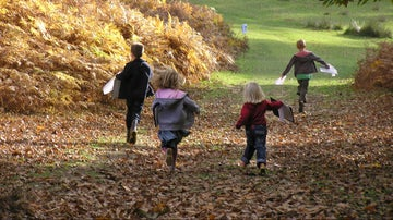 Embark on an autumnal adventure at Knole