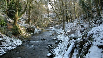 River in winter with snow covered wooded banks