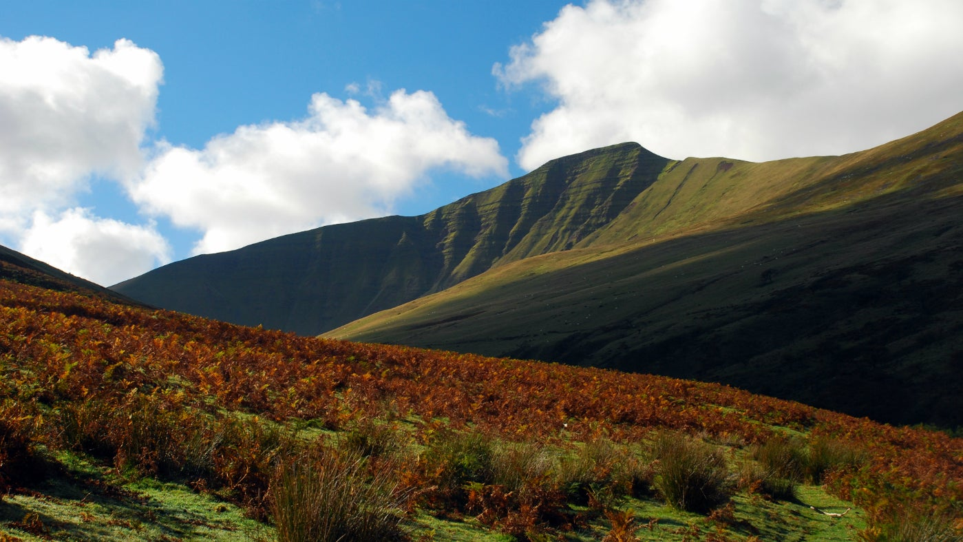 The iconic skyline of Pen y Fan surrounded by autumn colour, Brecon Beacons, Wales