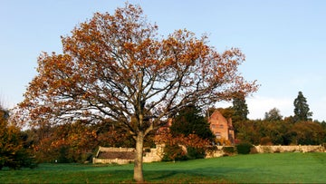 The house in autumn at Chartwell, a National Trust property in Kent