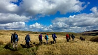 A group of walkers crossing the moors