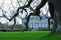 Antony house on a winter's day glimpsed through the branches of a black walnut tree