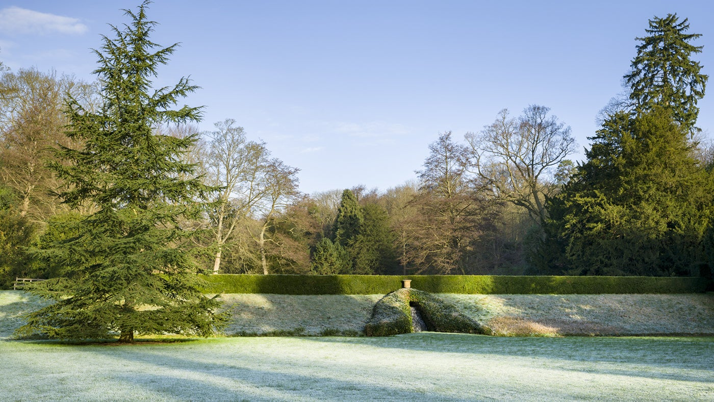 The north lawn, with cascade at the back, as frost covering the grass