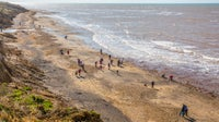 About twenty people scour the beach at Compton for fossils fallen from the cliffs