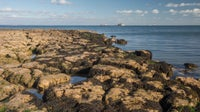 Rocks, rock-pools and sea at Nodes Point off St Helens Duver