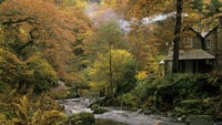 Watersmeet through the trees in autumn