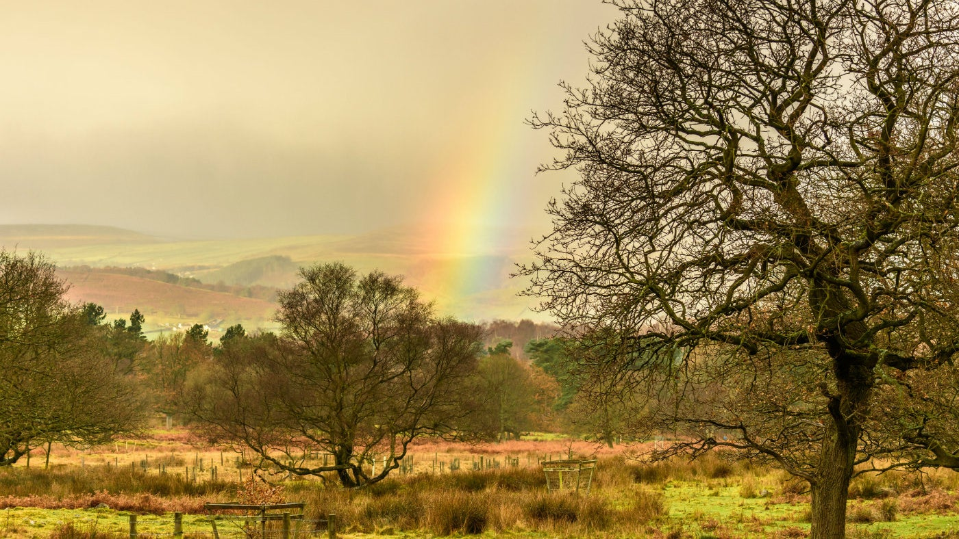 A rainbow over moorland at Longshaw