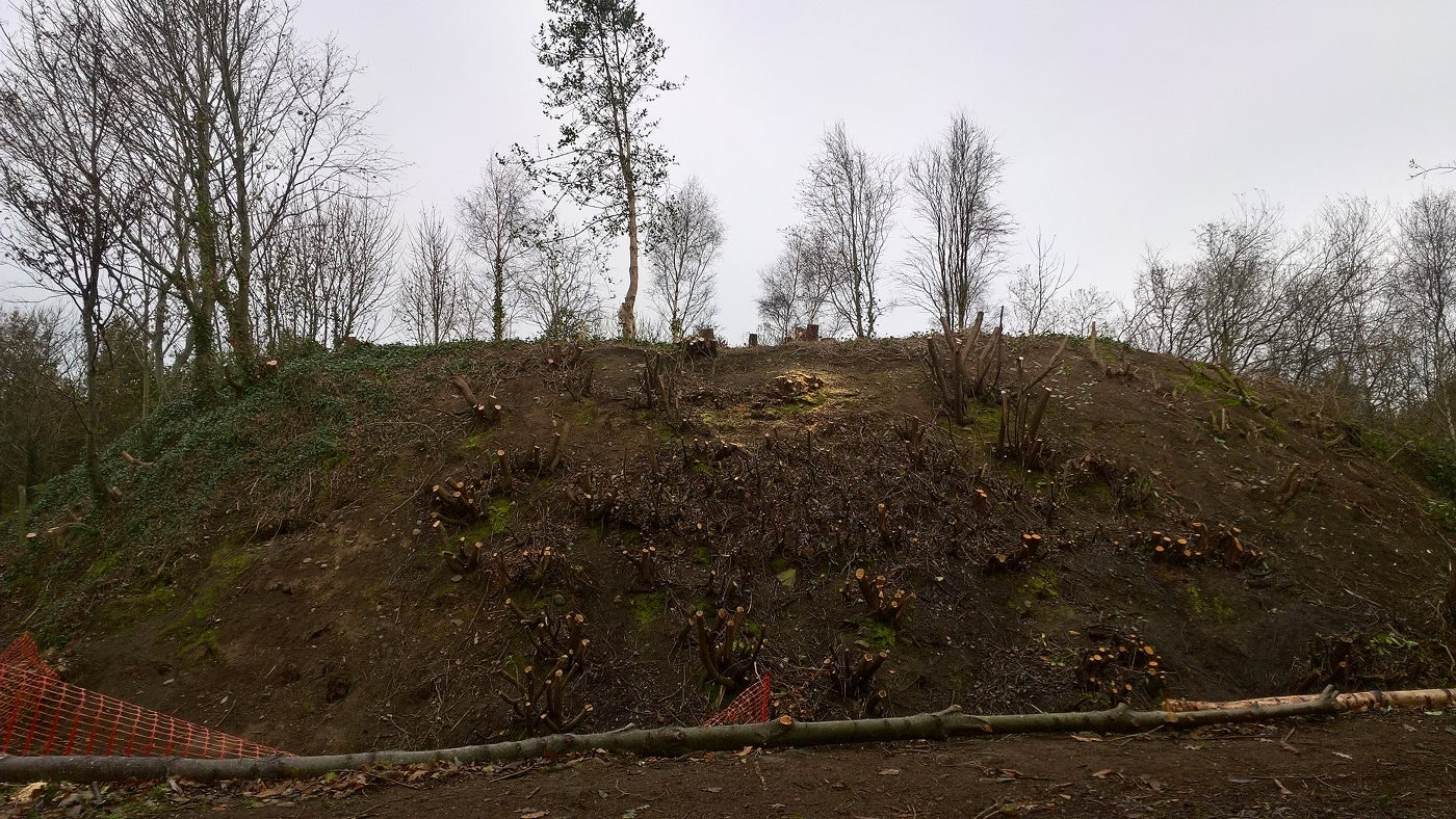 New Norman motte dating back 800 years is revealed at Mount Stewart