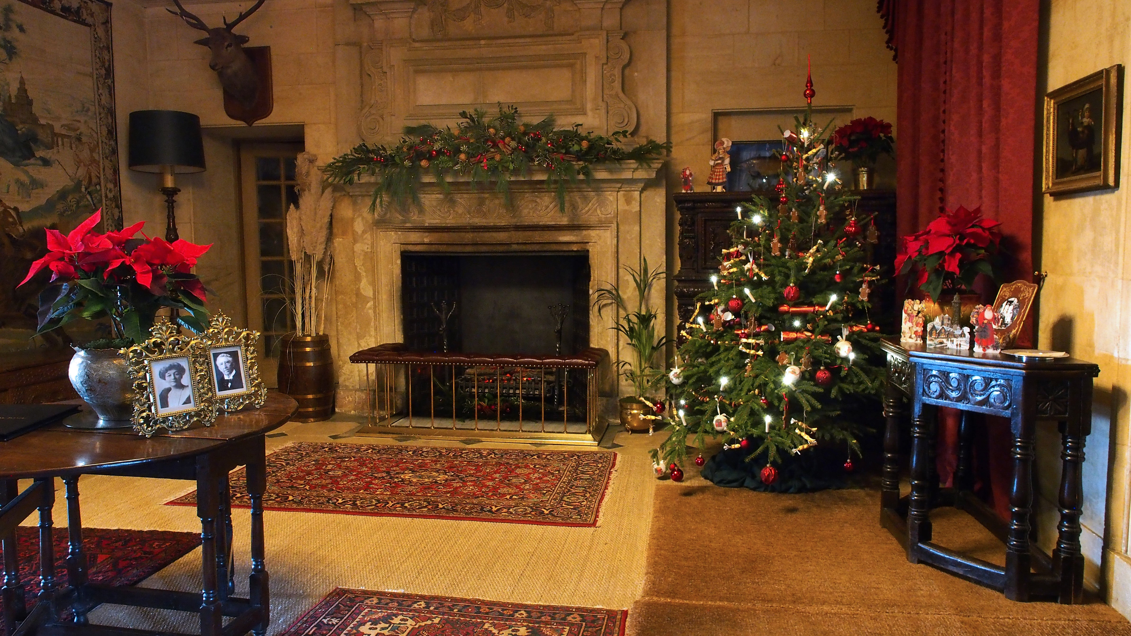 Christmas tree and decorated fireplace and table