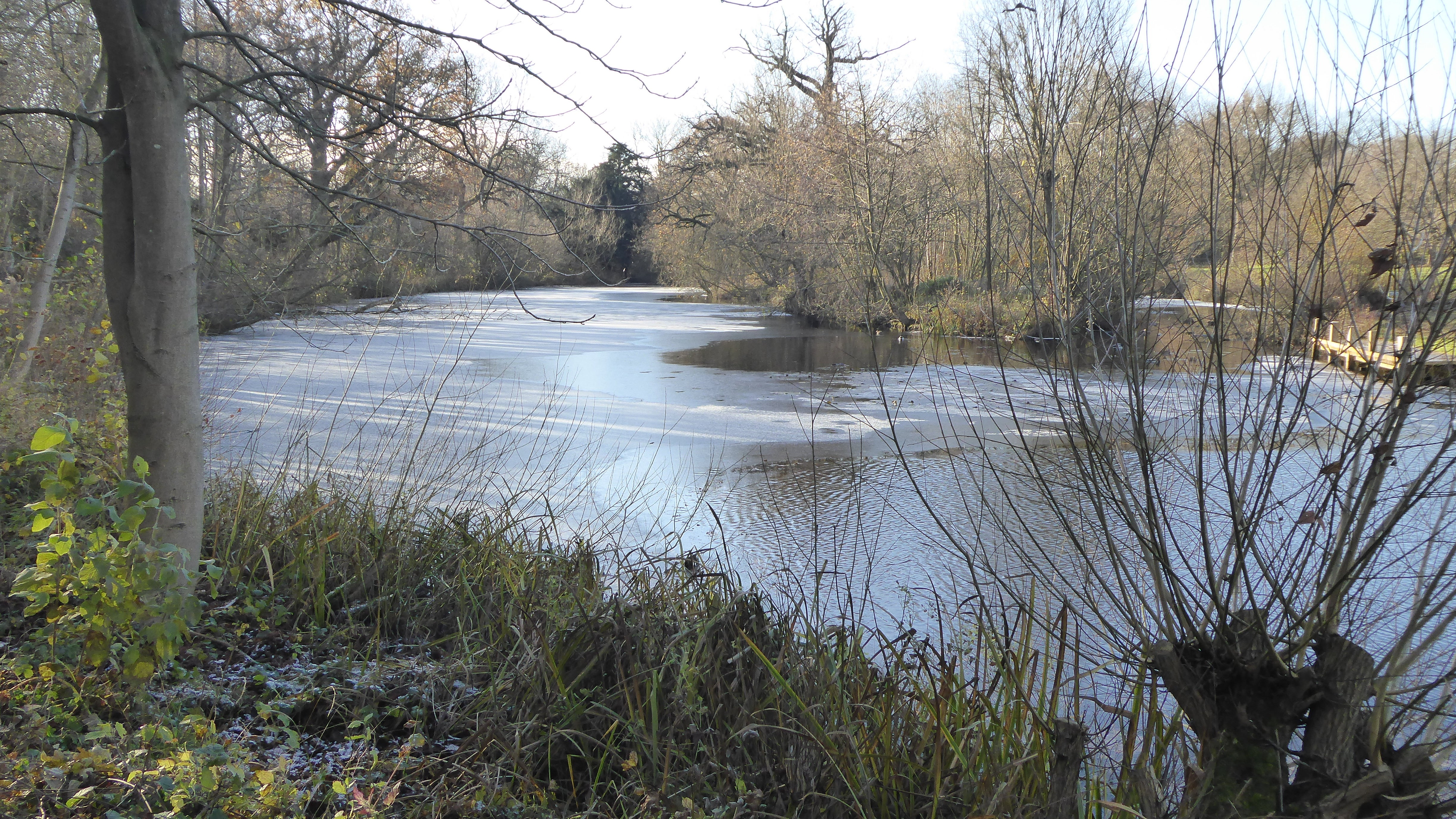 The Decoy Lake, nearly frozen over