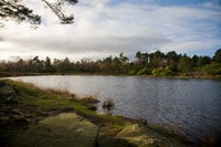 Nelly's Moss lakes in the winter sunshine