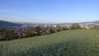 Frosty view from Bathwick Fields