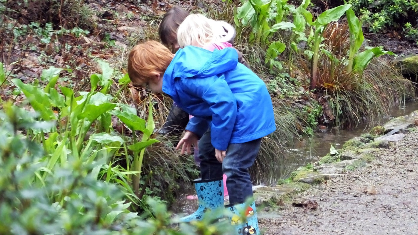 Children exploring in wellies at Trengwainton Garden, Cornwall