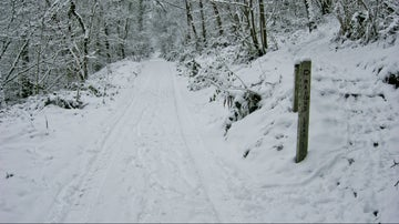 Wenlock Edge in snow