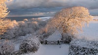 Peppercombe Valley in the snow