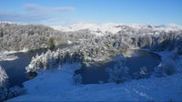 A picturesque Tarn Hows in the snow
