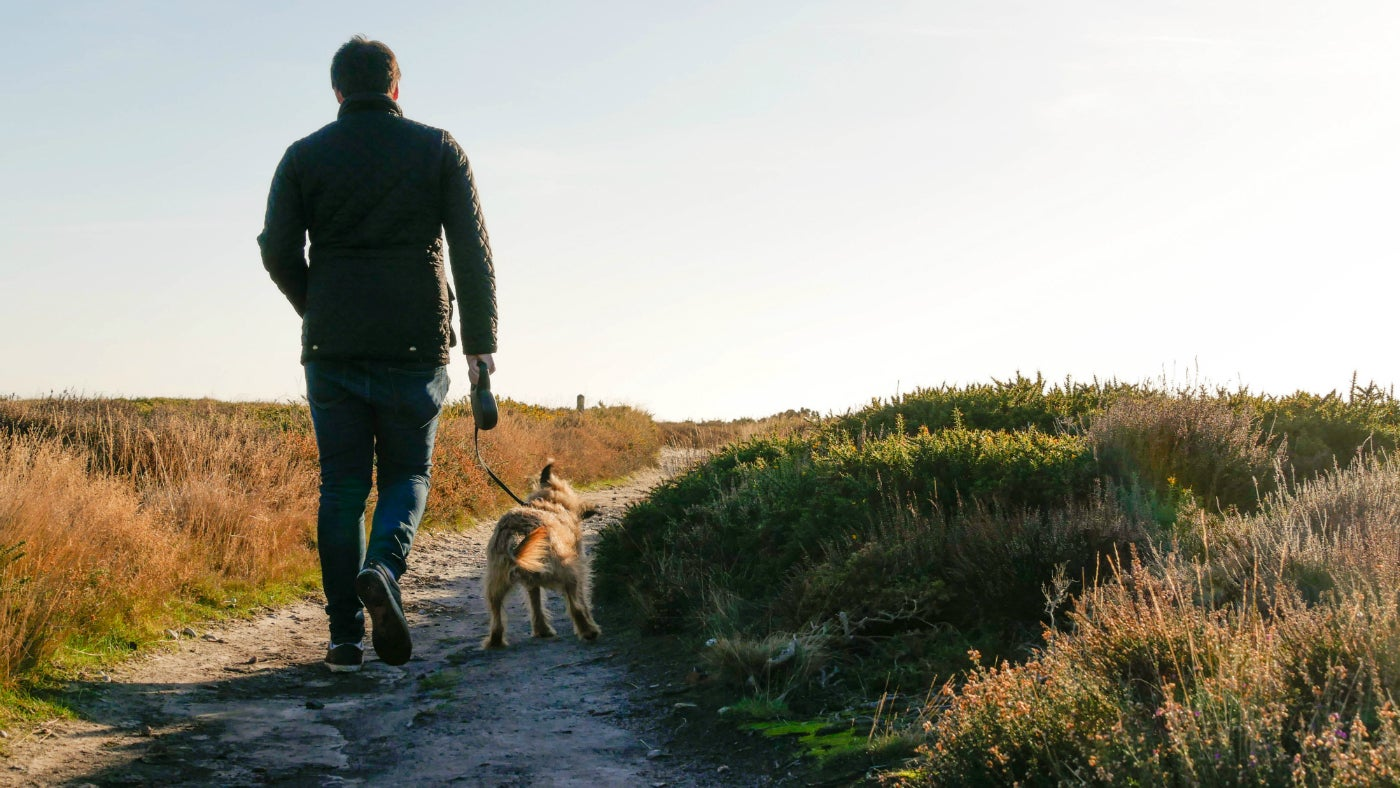 Man with dog on lead walking along heathland chalk track