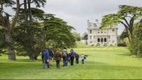 Enjoy a winter stroll at Kingston Lacy in Dorset