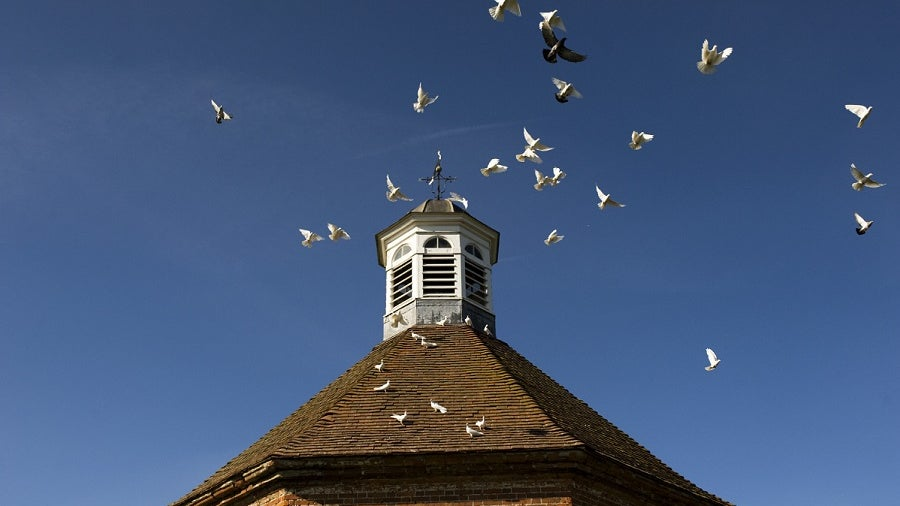 The octagonal dovecote in the Walled Garden at Felbrigg Hall, Norfolk