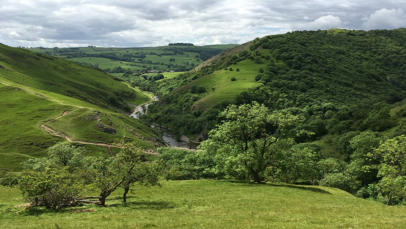 Dovedale valley in the Peak District
