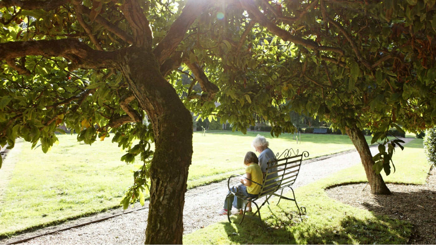 A grandmother and granddaughter sitting on a bench under a tree