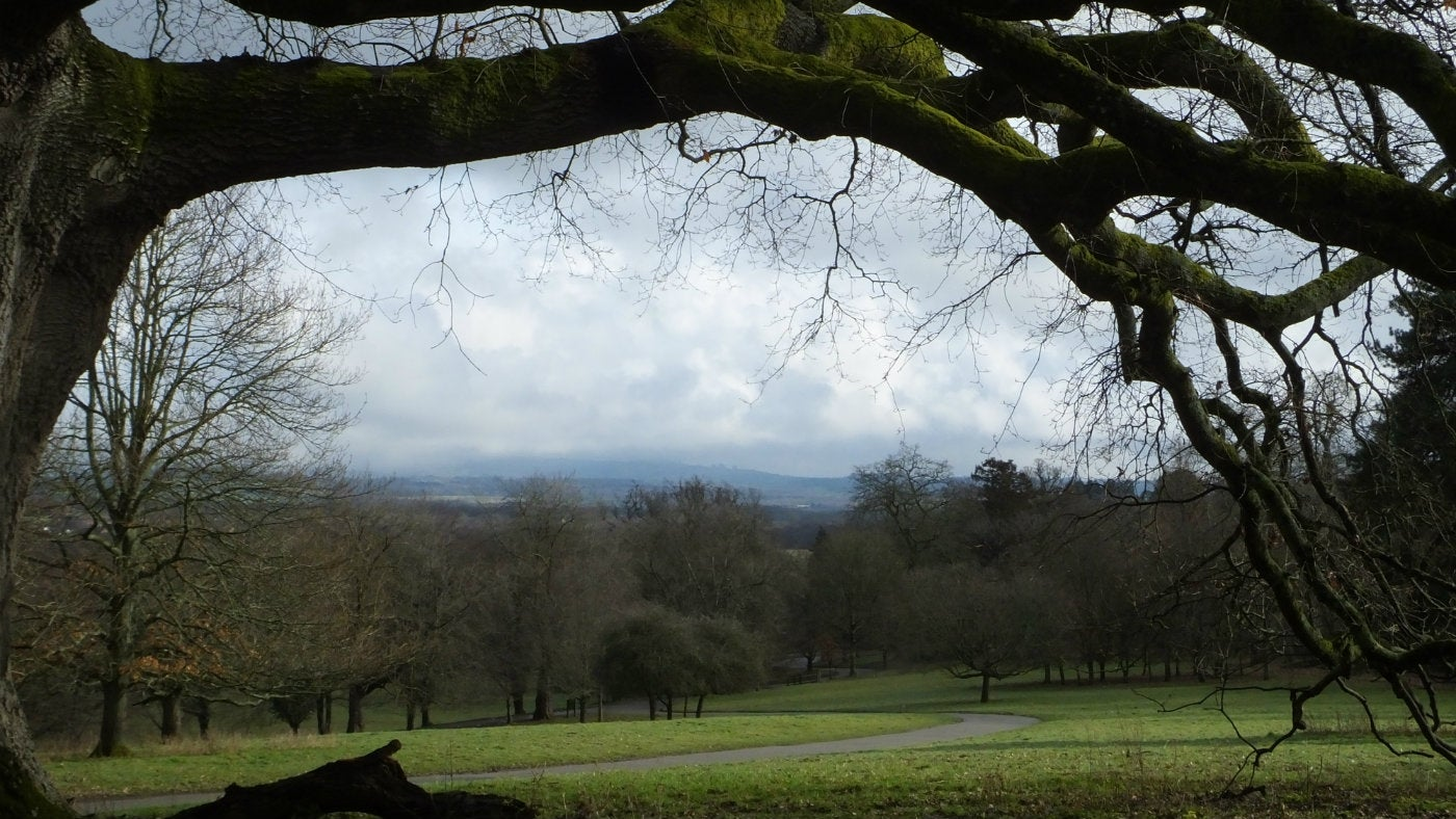 A winter's day at Parke, Devon