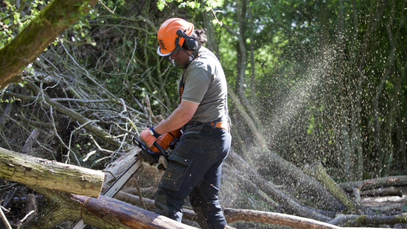 Man chainsawing