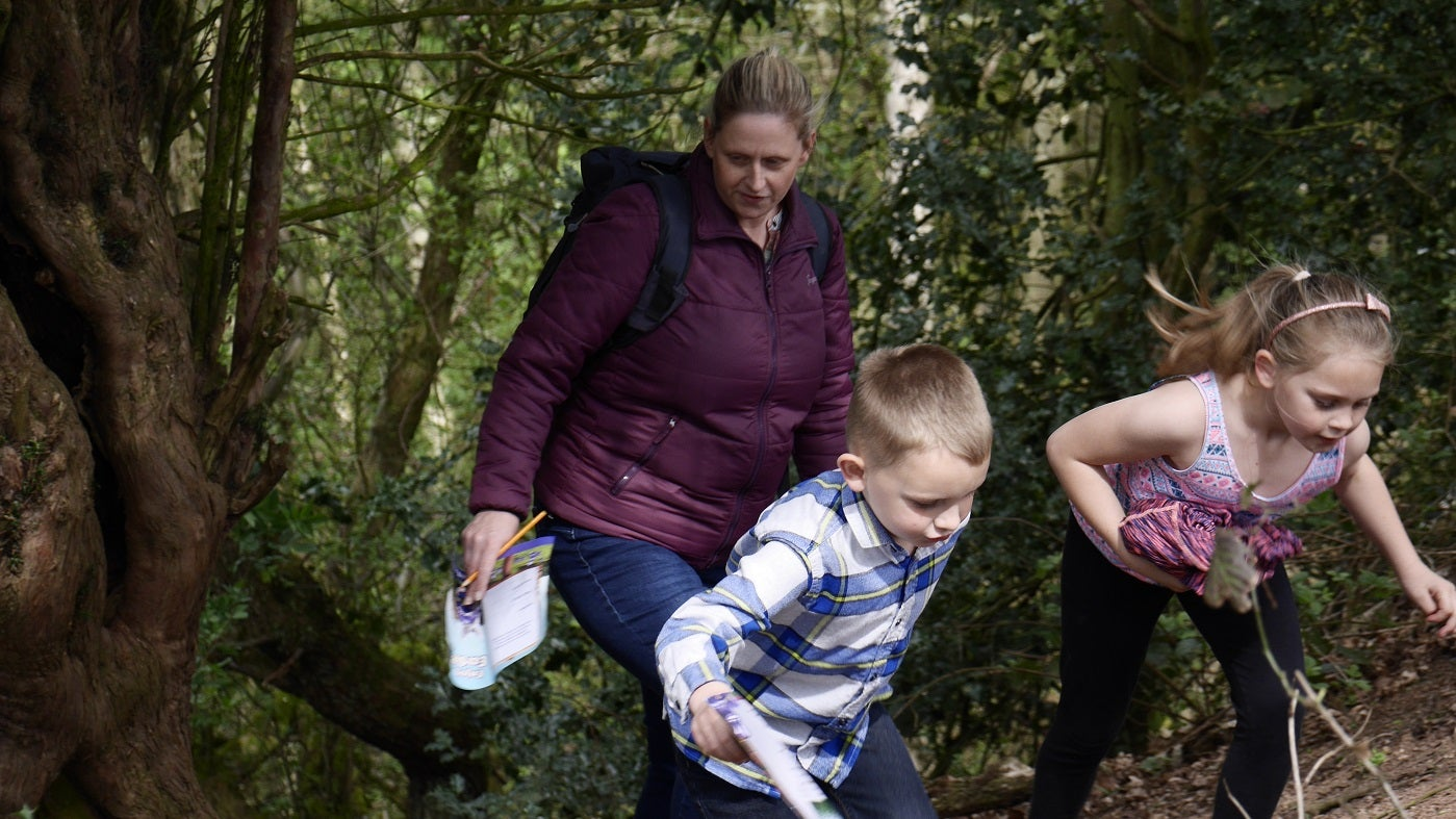 family trail at kinver