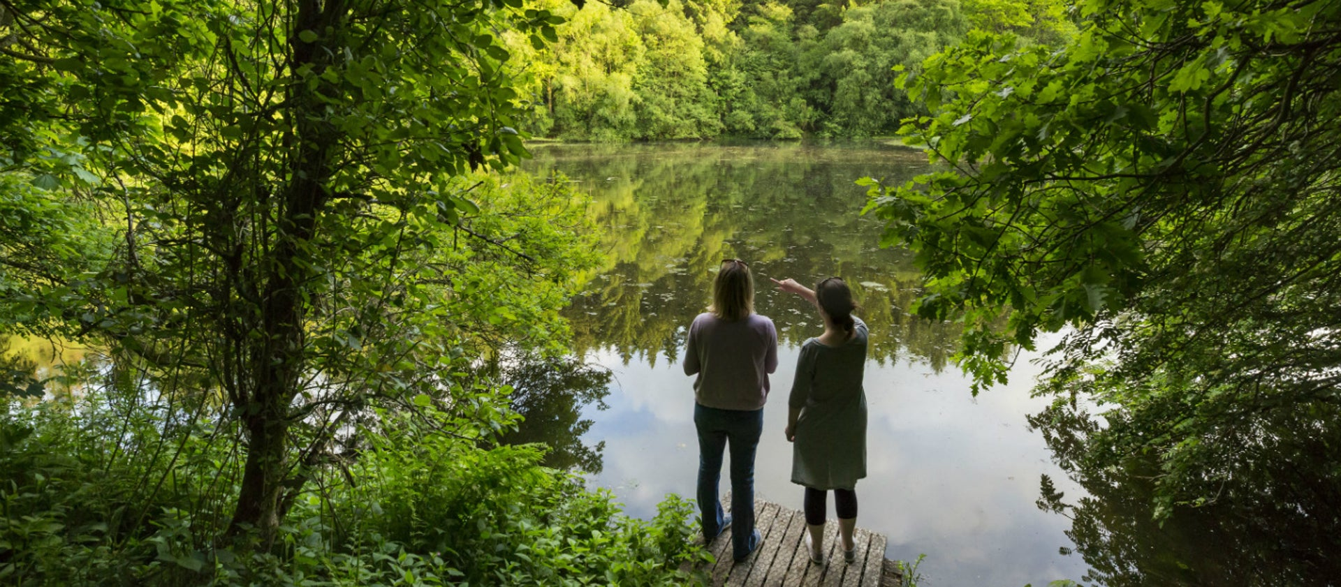 Skell Valley Project | National Trust