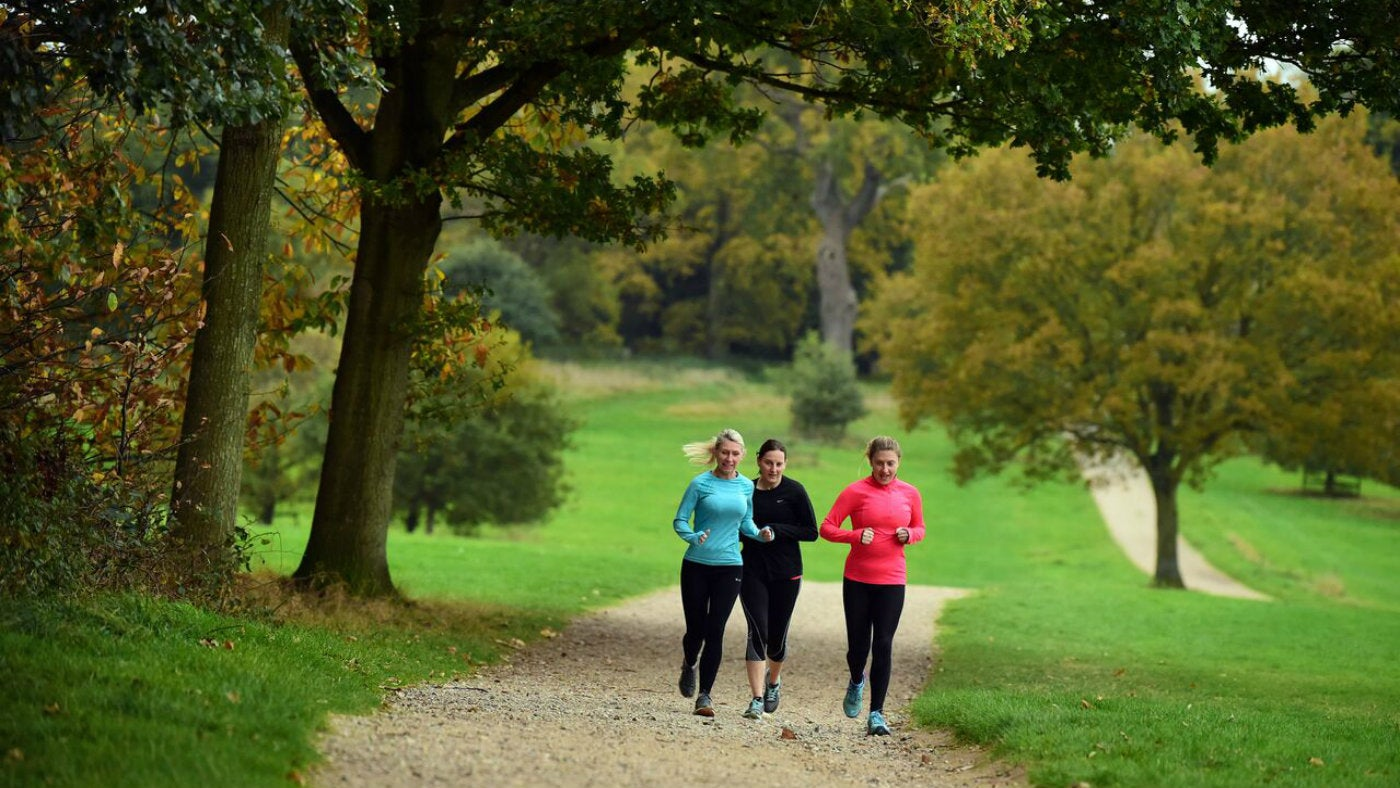 A group of runners make their way through Blickling's sweeping parkland.